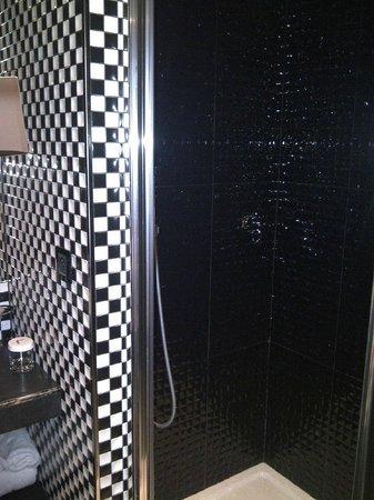 Hotel Splendor Elysees: shoer in the bathroom has handheld shower and overhead rain shower which sadly sprays everywhere