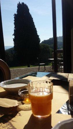 Villa Campestri Olive Oil Resort : Uitzicht bij het ontbijt