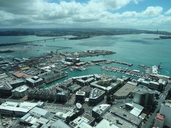 Sky Tower: The City & Bay