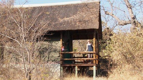 Sausage Tree Safari Camp : Our hut (no 5)