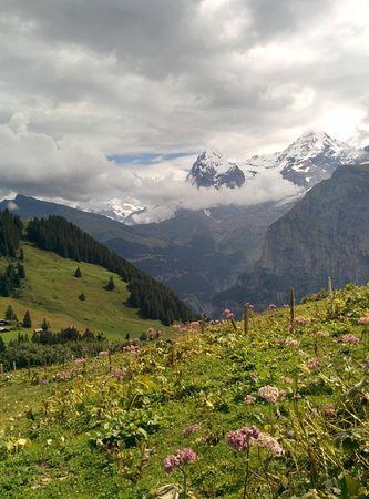 Eiger Guesthouse: Trail in the mountains