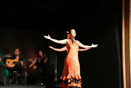 Palacio del Flamenco: Flamenco Show