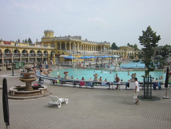 Széchenyi Baths and Pool : piscine esterne