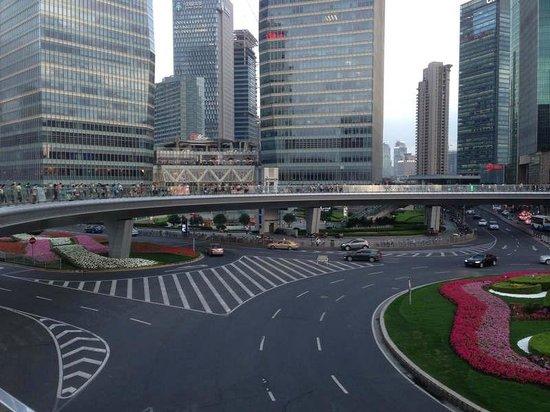Pudong New Area: ring bridge