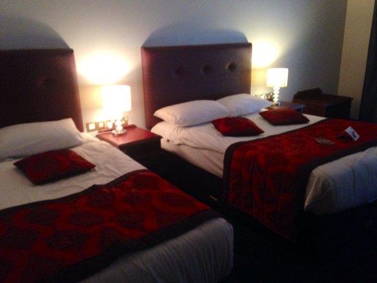 The Belvedere Hotel: Twin room