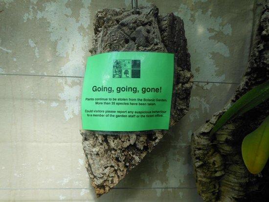 University of Oxford Botanic Garden: I cleptomani sono diffusi ovunque!