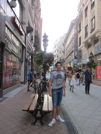 Vaci Street: via pedonale