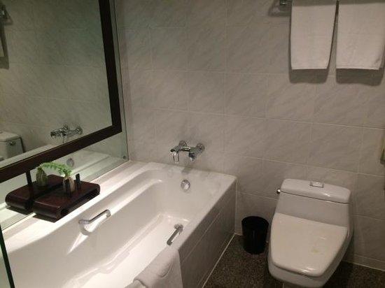 Pullman Bangkok Hotel G: Bathroom - poor water pressure