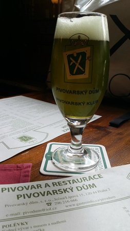 Pivovarsky dum : The nettle beer has a great taste but an unusual appearance
