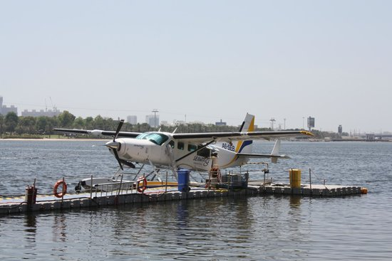 Seawings Seaplane Tours: the seaplane