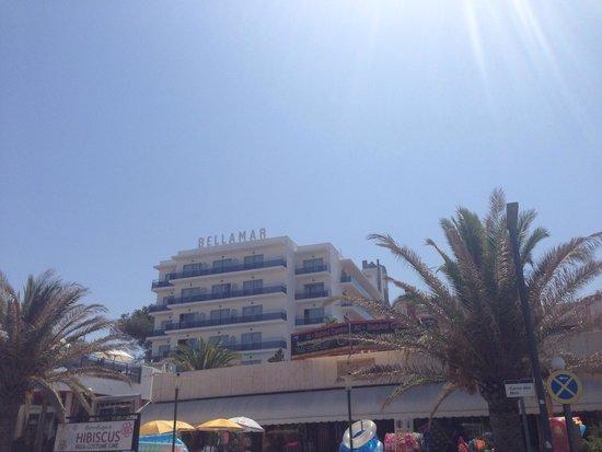 Bellamar Hotel: The hotel