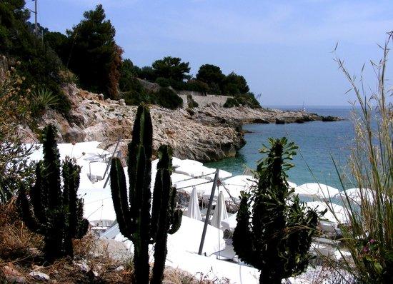 La Spiaggetta dei Balzi Rossi: Spiaggetta dei Balzi Rossi 2