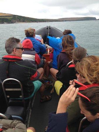 Cornish Sea Tours: 1