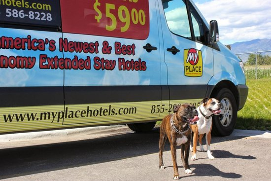 My Place Hotel-Bozeman, MT: Our Boxers in front of the Motel Shuttle Service Van.