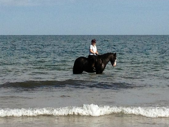 Arch House Bed & Breakfast : Paddling in the sea!