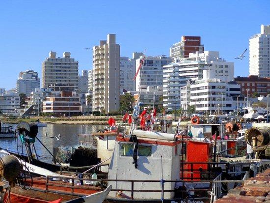 Puerto de Punta del Este: Porto de Punta del Este