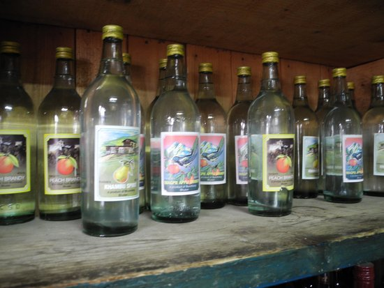 Swiss Guest House : local produced schnaps