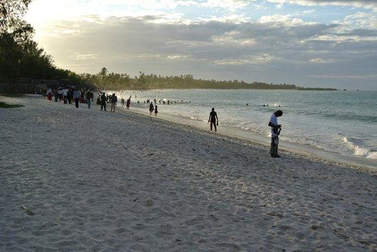 Kipepeo Beach Village : Strand voor Kipepeo