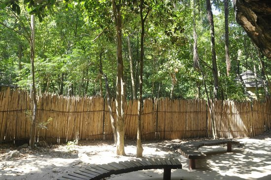 PhraNang Cave Beach : Phra Nang Beach