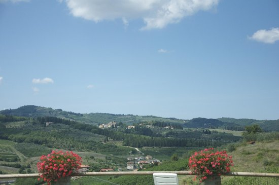 Agriturismo Patrizia Falciani: view from the pool