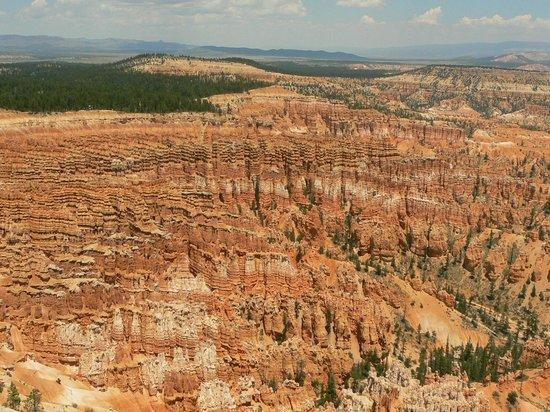 vue sur le canyon depuis Bryce Point