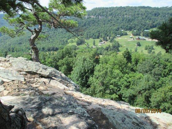 Horseshoe Canyon Ranch Zipline: ZipLine