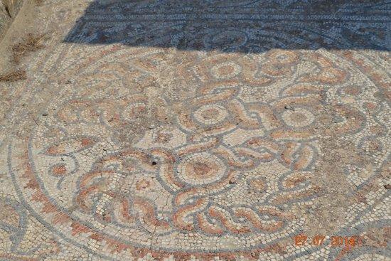 Vieille ville d'Éphèse : Floor mosaics