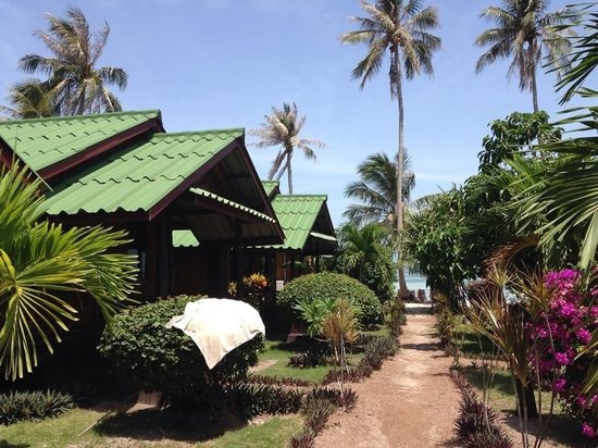 Phangan Beach Resort : Walk out from the bungalow onto the beach