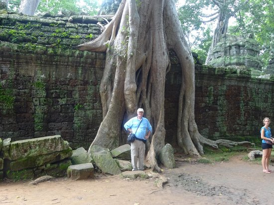 Private Siem Reap Tour Guide: Encroaching Junfle and Visitor