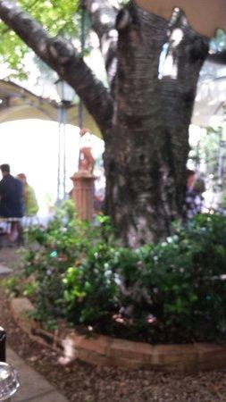 Trattoria Osenna : Giardino .........