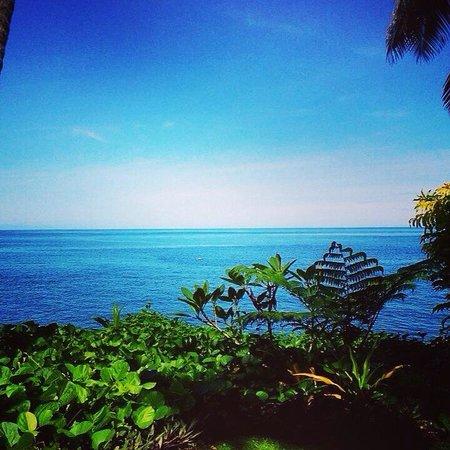 Paradise Taveuni: breathtaking  Mosese & Tara