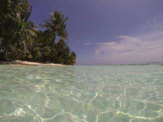 Vilamendhoo Island Resort & Spa : 5