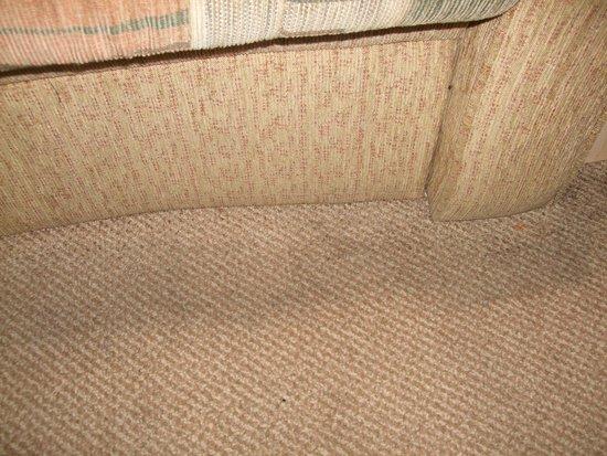 Golden Coast Holiday Village: dirty carpet