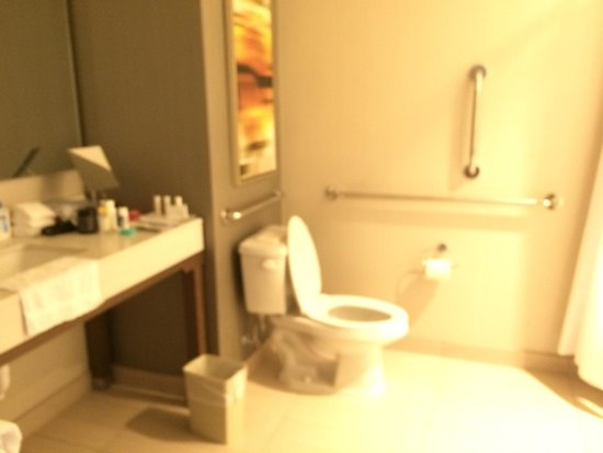 Courtyard Portland Downtown/Waterfront: Bathroom is large with all amenities except tones 😞