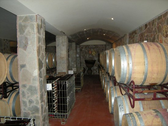 ClubHotel Riu Guarana : Things to do. winery visit