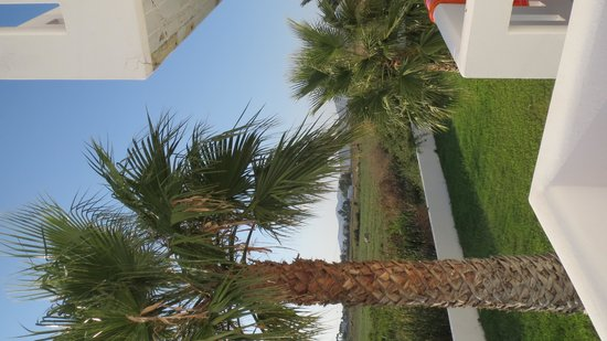 Bouradanis Village Hotel: Dal balcone
