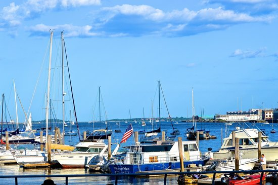 Boston Marriott Long Wharf: harbor