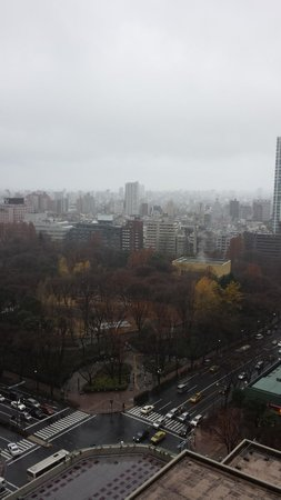 Hilton Tokyo: View from hotel room