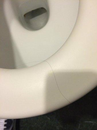 Ronda House Hotel: Hairy-Toilet