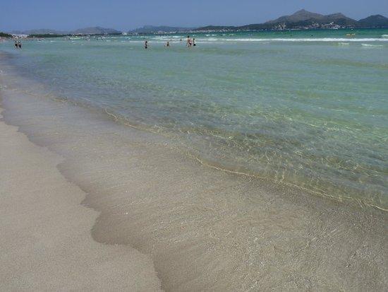 Aparthotel Playa de Muro Suites: Sehr schöner Strand in 3 min zu Fuß zu erreichen