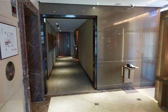 Green World Hotel Jian Pei Suites: 廊下