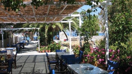 Selini Cafe