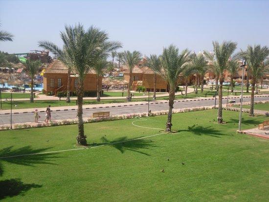 Aqua Blu Sharm : room view