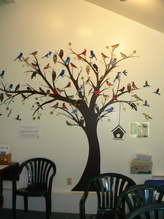 Birds of Vermont Museum : mural on classroom wall