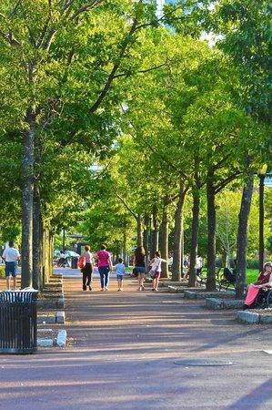 Boston Marriott Long Wharf : park area by hotel