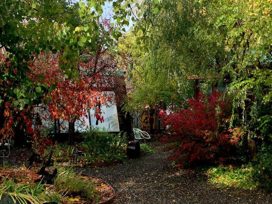 Quincy, CA: Ada's cottage in the fall