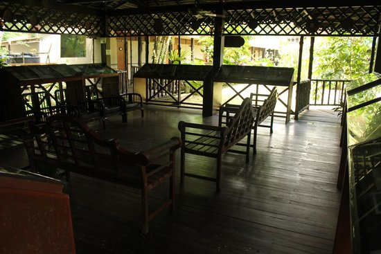 Sukau Rainforest Lodge: Lecture hall