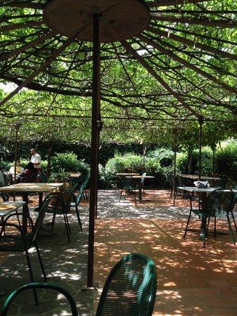 Ristorante  Oltre il giardino: Giardino