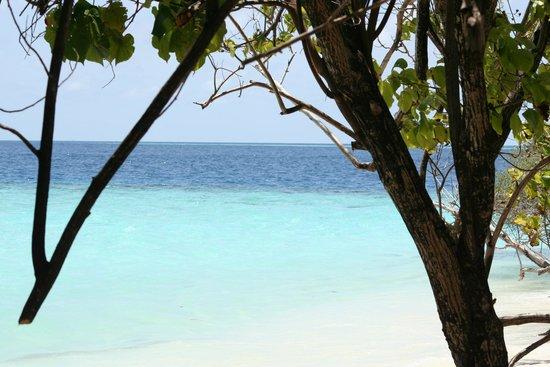 Eriyadu Island Resort : Blick vom Bungi