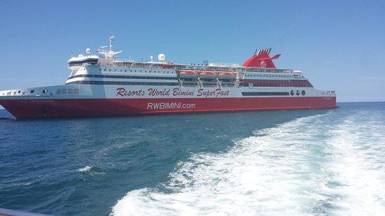 Superfast Picture Of Bimini SuperFast Miami TripAdvisor - Bimini superfast cruise ship
